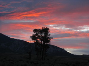 Ruby Springs Ranch Sunset